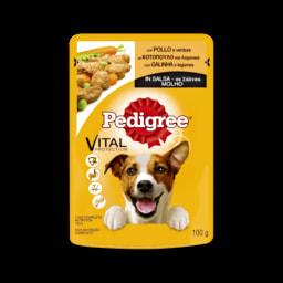 Alimento Húmido para Cão Pedigree
