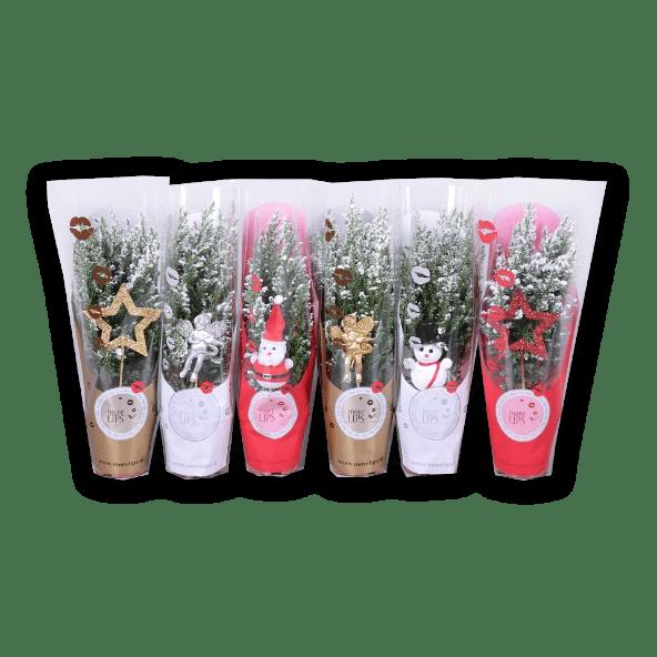 GARDEN FEELINGS® Árvore de Natal Mini