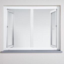 POWERFIX® Janela para Proteção de Insetos 100x120 cm