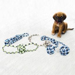 Corda de Brincar para Cão