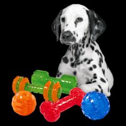 Brinquedo para Higiene Oral de Cão