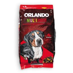 ORLANDO® Multi Croquetes para cão