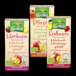 GUT BIO® Refrigerante Multifrutos Biológico