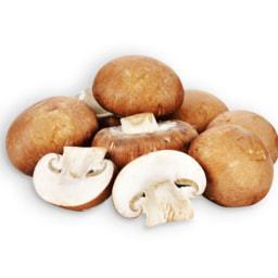 Cogumelos Marron