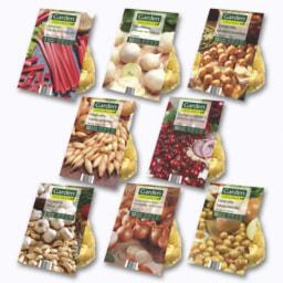 Bolbos de Legumes