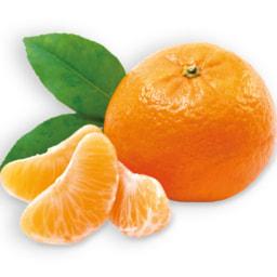 Clementinas IGP - Citrinos do Algarve