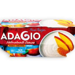 ADAGIO® Iogurte Cremoso / Cremoso Magro