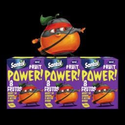 Néctar Fruit Power 8 Frutos Santal