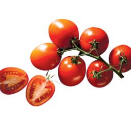 Tomate Chucha