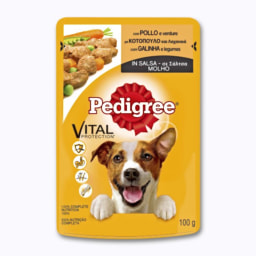 Alimento Húmido para Cão
