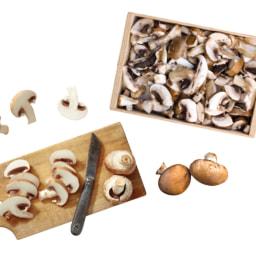 Cogumelo Marron Nacional