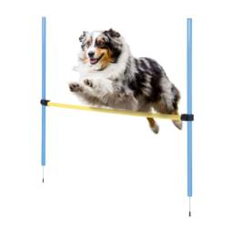 Zoofari® Acessórios de Treino para Cão
