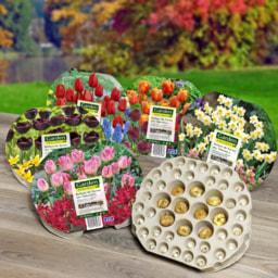 Bolbos de Flores