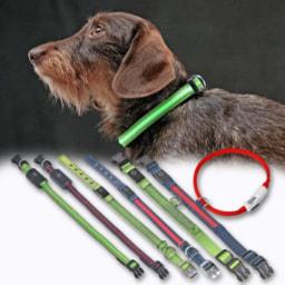 Coleira para Cão com Faixas Luminosas LED