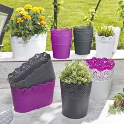 Vaso Decorativo Plantas