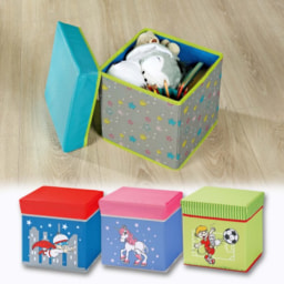 Caixa de Arrumação para Criança